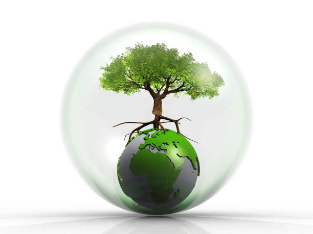 Melindungi bumi