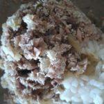 Nasi Megono