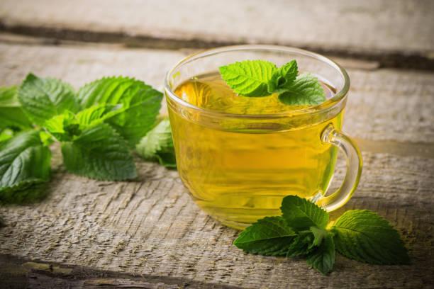 Olahan dan manfaat daun mint